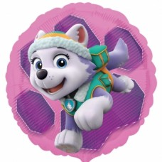 SD-C:PawPatrol Skye & Everest