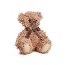 Noah Teddy Bear 12In