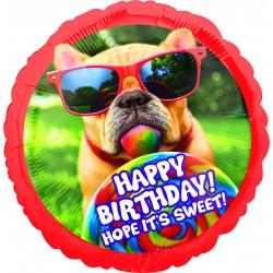 Jumbo:Avanti Sweet Birthday