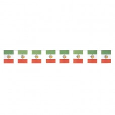 MEXICAN FLAG PAPER BNNR 8 X6