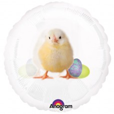 18IC:MAGIICOLOUR-EASTER CHICK