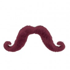 Burgundy Moustache