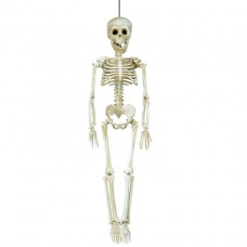 DEC:PLASTIC SKELETON