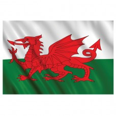 PPP WALES FLAG 1.5x0.9m