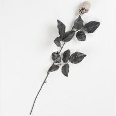 Black Rose Skull