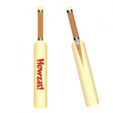 PPP Foil Inflate Cricket Bat