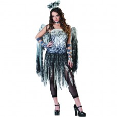 Dark Angel Adult Costume size 10-12