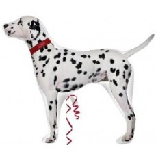 S/SHAPE:DALMATIAN VENDOR