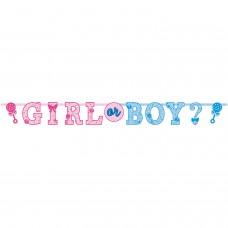BNR LTR JMB KIT GIRL OR BOY?