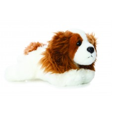 Luv to Cuddle King Charles Spaniel 11In