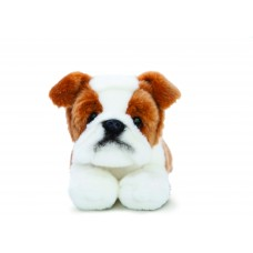 Luv to Cuddle Bulldog 11In