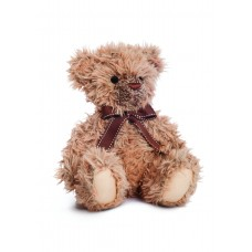 Noah Teddy Bear 11In