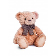 James Teddy Bear 10In
