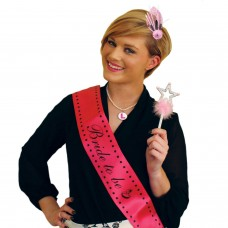 Hen Party - Dress up Set